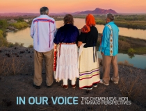 In Our Voice (2018)
